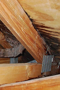 Roof Repair Services in Sarasota u0026 North Port & Roof Repair Contractors in Sarasota | Roofing Repairs | memphite.com