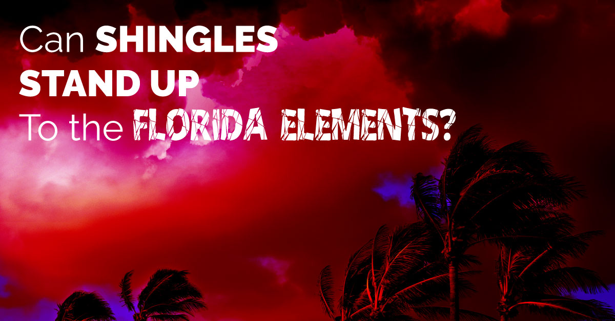 Can Shingles Stand Up to the Florida Elements?